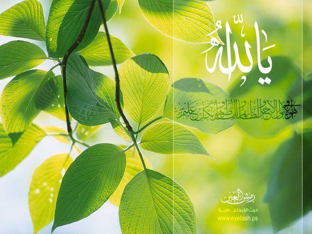 خلفيات فيستا إسلامية - يا الله
